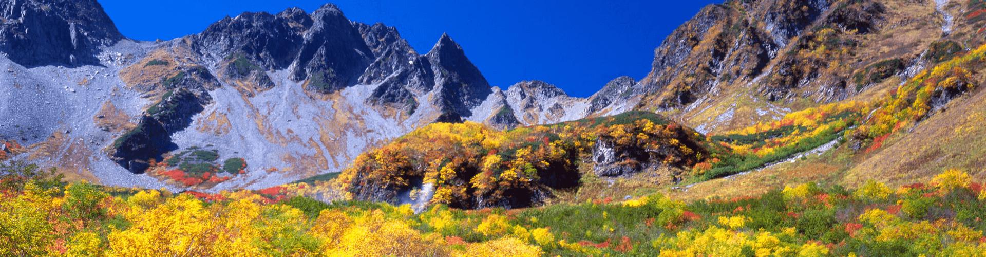 日本の山の写真