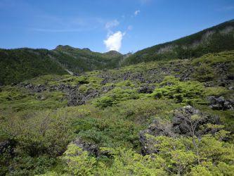야츠가타케 八ヶ岳 Mt.Yatsugatake